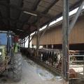 Landwirtschaft Huebhof
